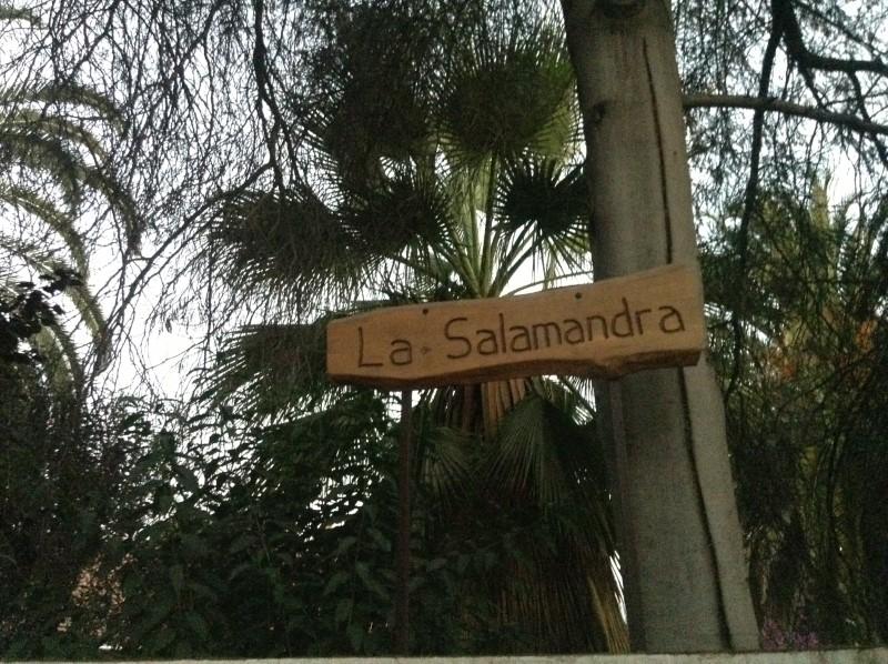 letrero la salamandra